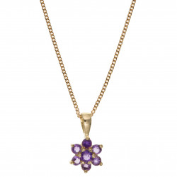 9ct Amethyst Pendant and Chain AT0041