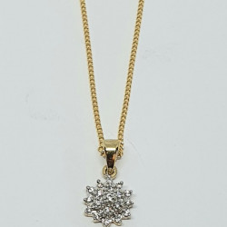 Pre Owned 9ct Diamond Cluster Pendant and Chain ZH446